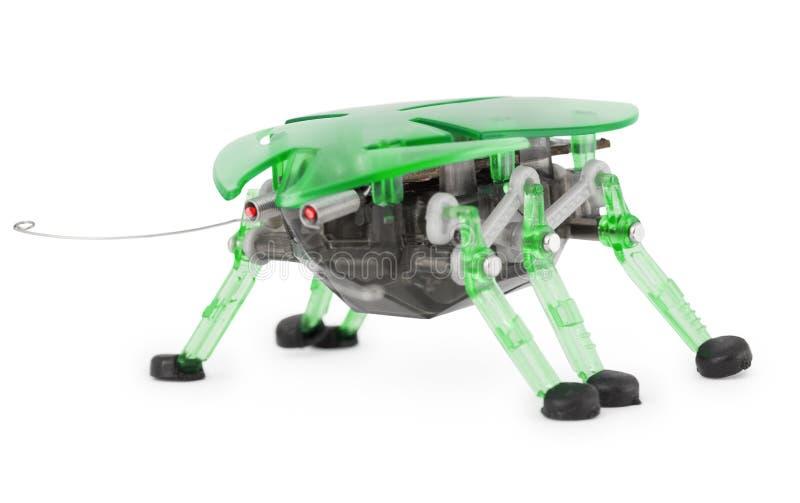 背景甲虫cyber机器人玩具白色 免版税库存照片