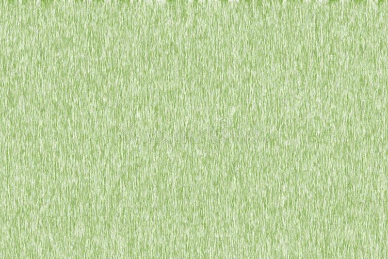 背景的绿色纹理 免版税库存图片