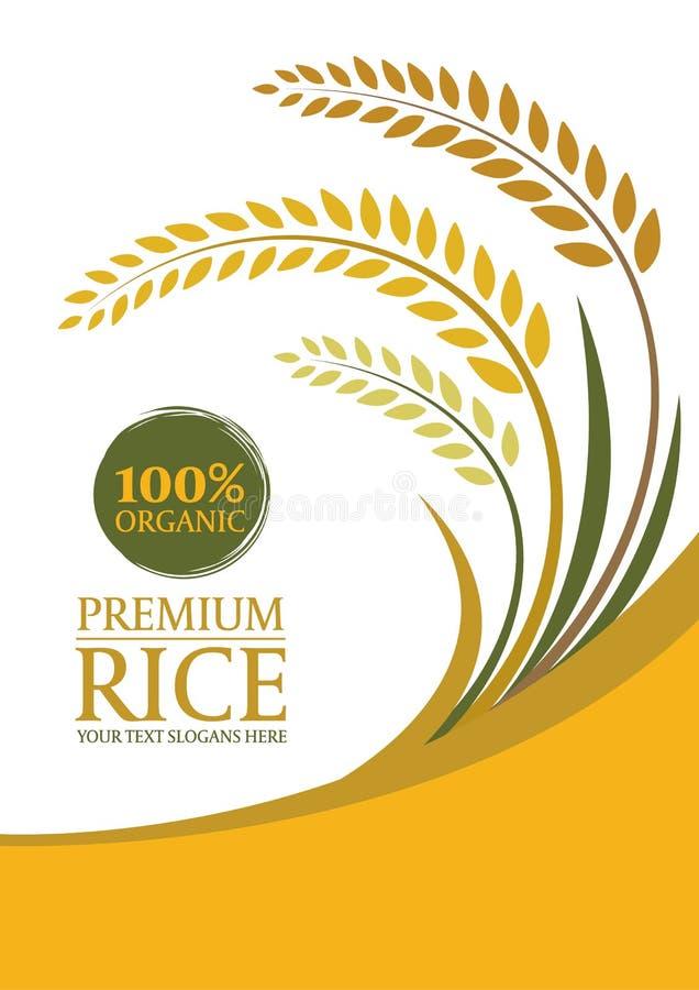 背景的-布局模板大小A4传染媒介设计黄色水稻 向量例证