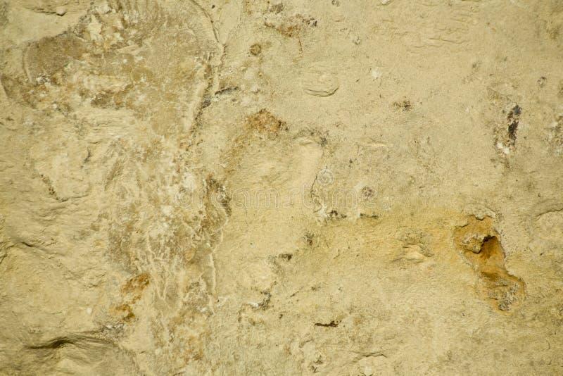 背景石灰石概略的纹理 免版税库存图片