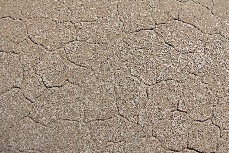背景破裂的干燥地球 破裂的泥模式 在裂缝的土壤 免版税库存图片