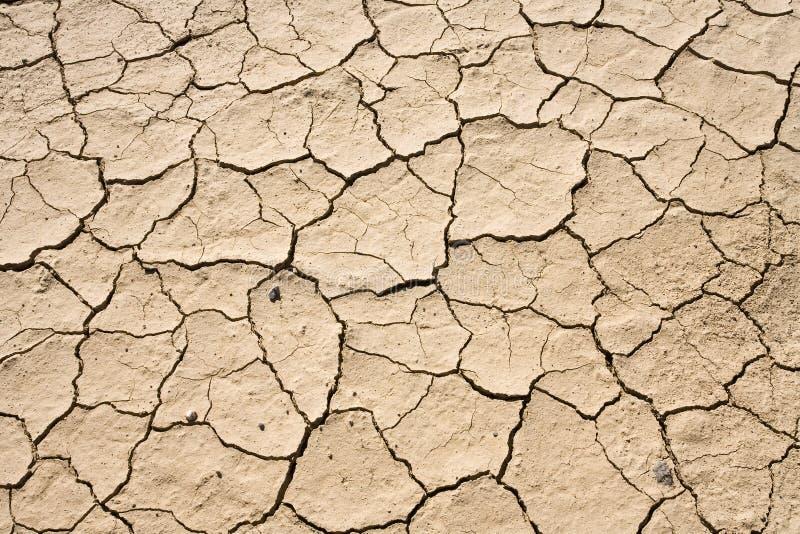 背景破裂的沙漠干燥地面泥模式 库存图片