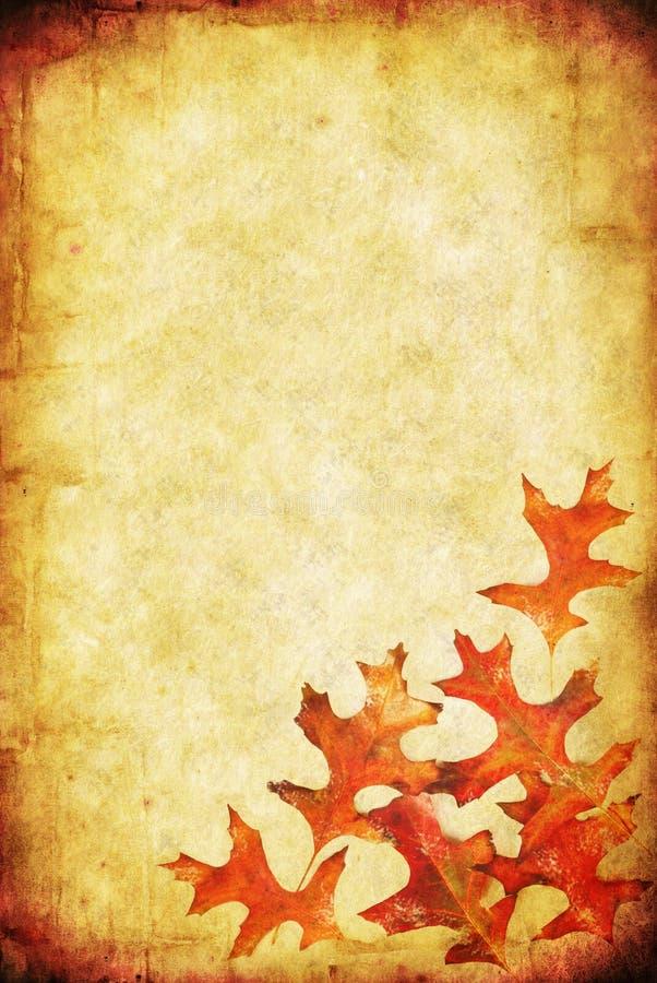 Download 背景秋天grunge 库存例证. 插画 包括有 运行, 织地不很细, 察觉, 反气旋, 纸张, 槭树, browne - 6883761