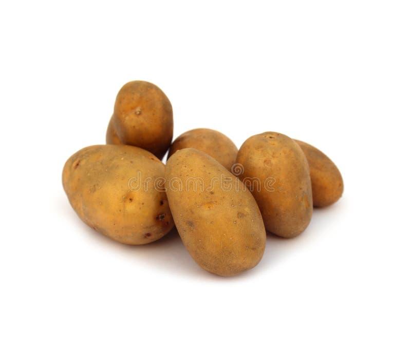 背景空白查出的土豆 免版税图库摄影
