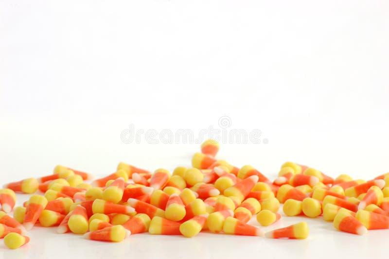 背景糖味玉米白色 免版税库存照片