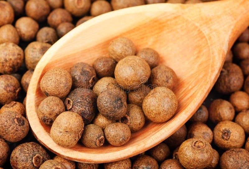 背景纹理全部的多香果(牙买加胡椒)与作为香料使用的木匙子在全世界烹调。 并且使用的i 库存图片