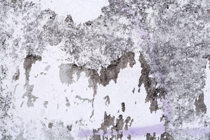 背景纹理墙壁白色 免版税库存图片
