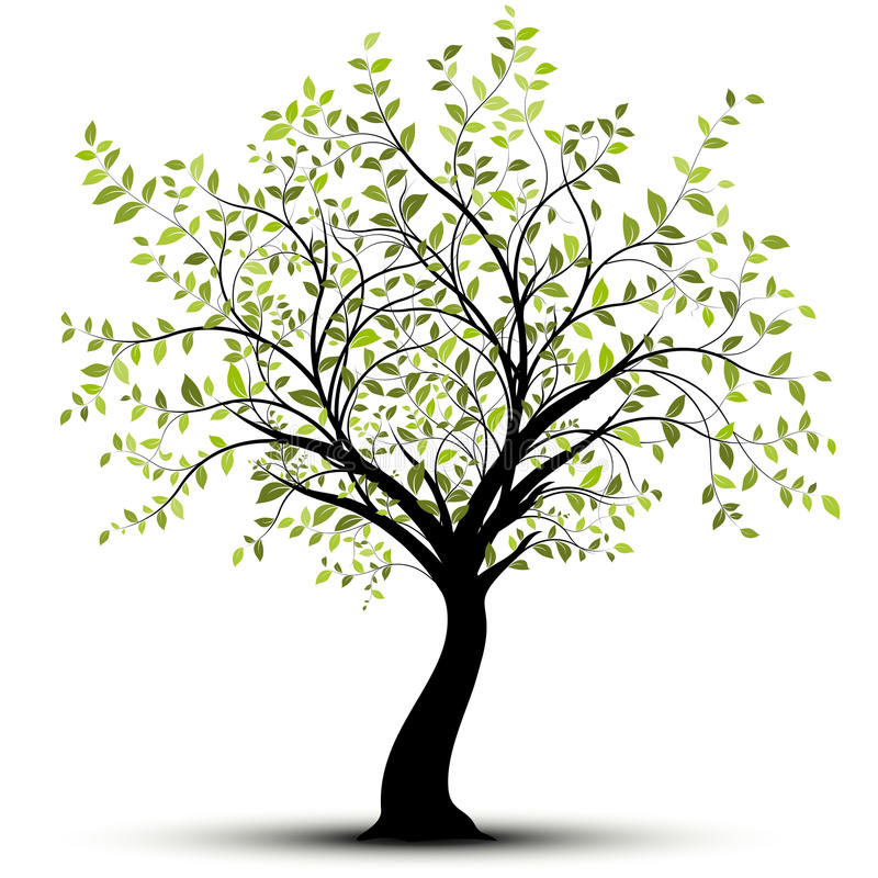 背景绿色结构树向量白色 库存例证