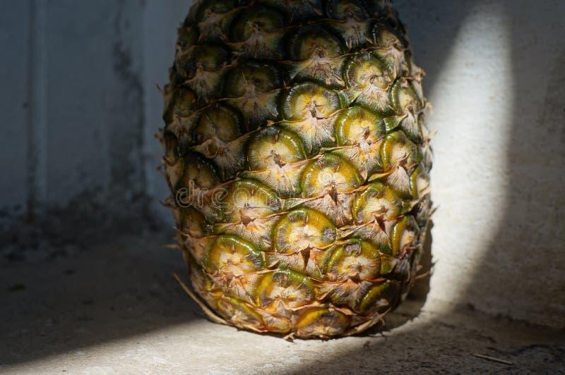 背景美好的自然菠萝纹理 免版税库存图片