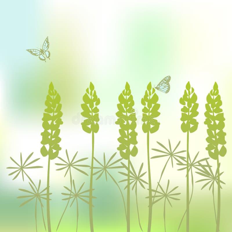 背景羽扇豆 向量例证