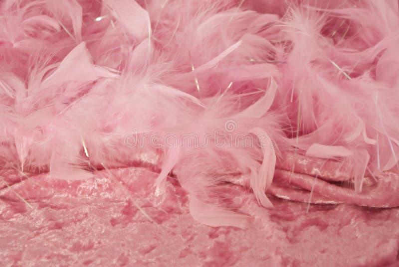 背景羽毛粉红色天鹅绒 库存图片