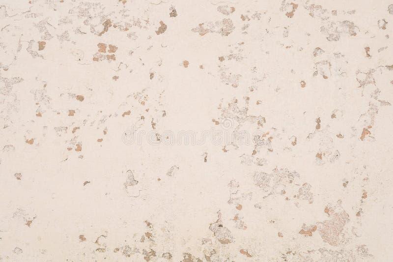 背景老墙壁乳白色颜色 图库摄影