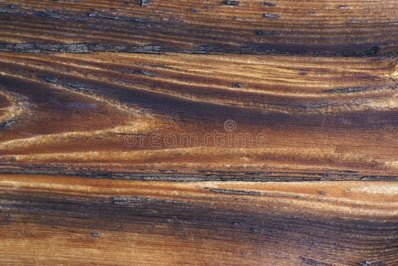 背景老木头 库存照片