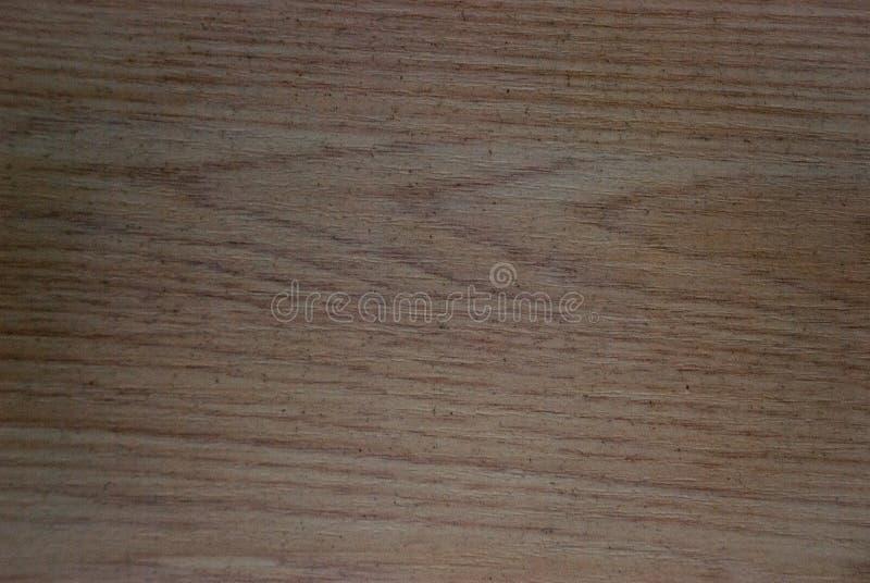 背景老纹理木头 库存图片
