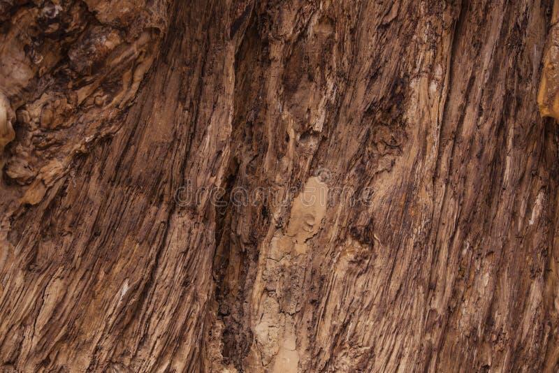 背景老谷仓木板的纹理样式-土气牛仔古董葡萄酒样式 免版税库存图片