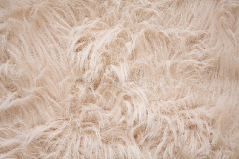 背景色的奶油色毛茸白色 免版税库存图片
