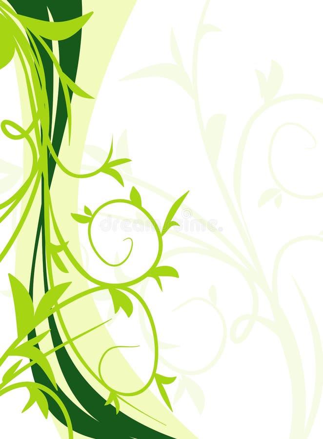 背景花卉绿色 库存例证