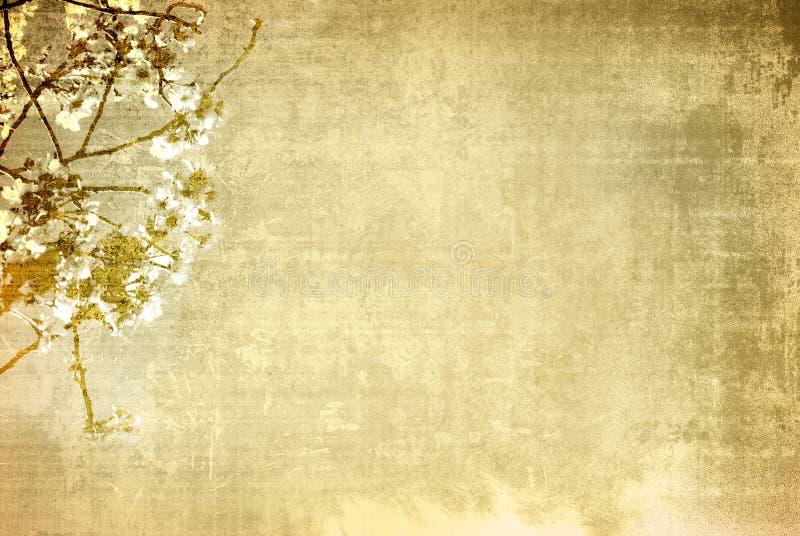 背景花纸张葡萄酒 免版税库存照片