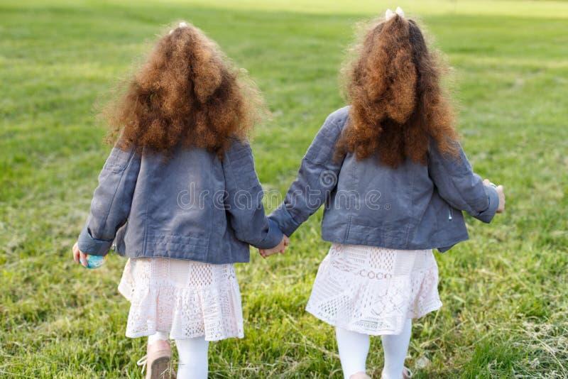 背景草查出的白色 手拉手走在草甸的两个孪生女孩在公园 从后面和后方 卷曲小孩姐妹 库存照片