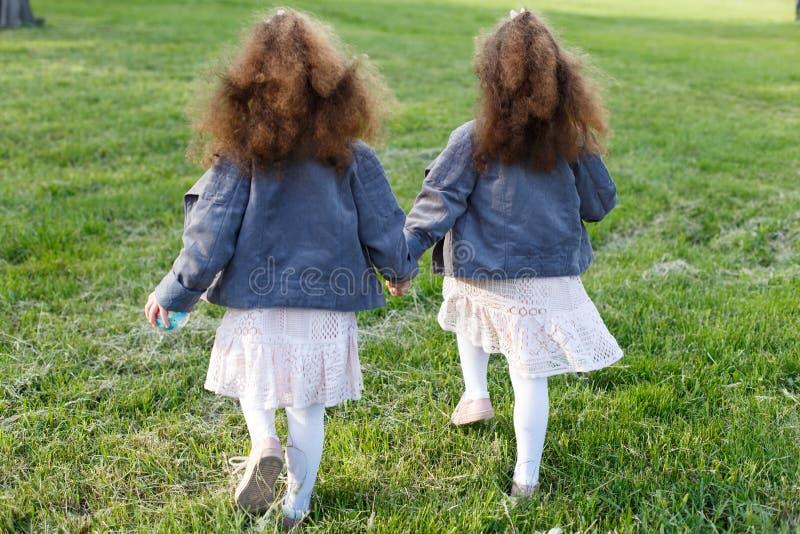 背景草查出的白色 手拉手走在草甸的两个孪生女孩在公园 从后面和后方 卷曲小孩姐妹 图库摄影