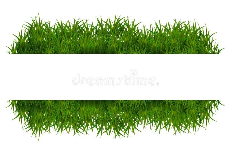 背景草绿色查出的白色 库存例证