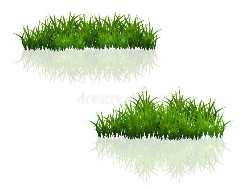 背景草绿色查出的白色 向量例证