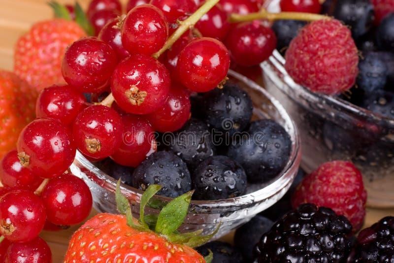 背景莓果 库存照片