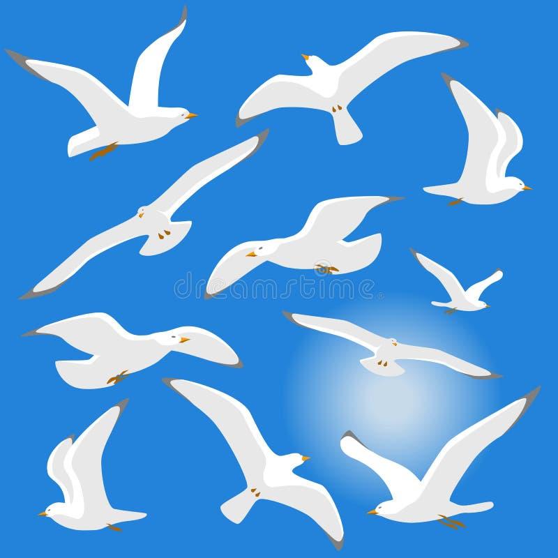 背景蓝色查出的海鸥 库存例证