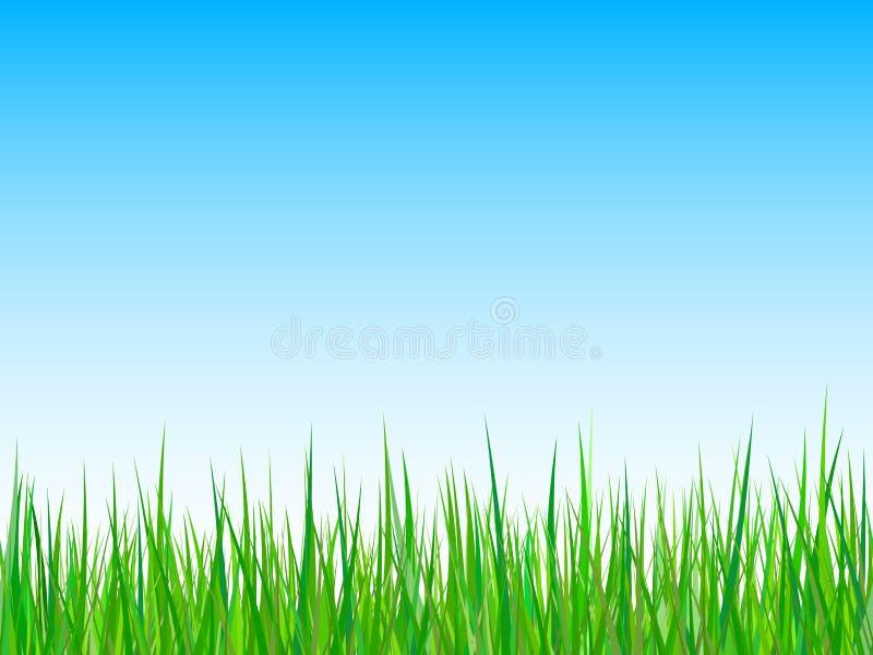 背景蓝色草天空向量 皇族释放例证