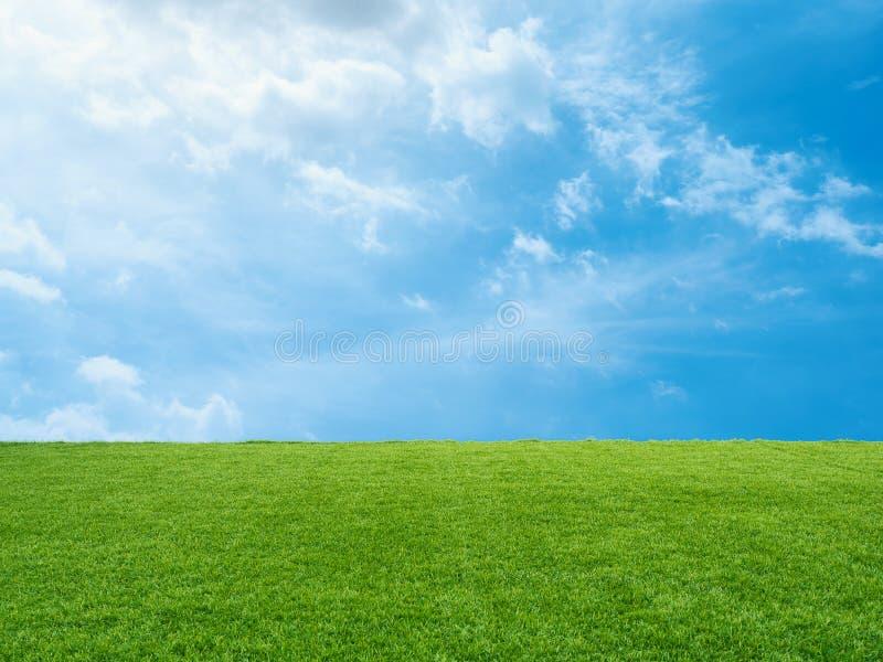 背景蓝色草绿色例证天空向量 免版税库存照片