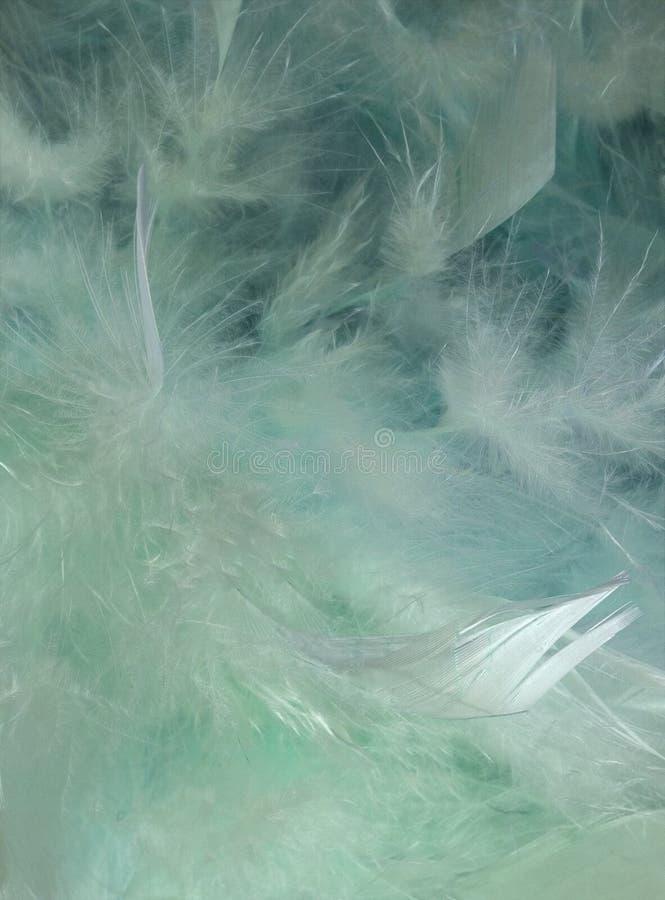 背景蓝色迷离羽毛海洋水 库存例证