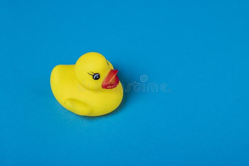 背景蓝色鸭子橡胶黄色 免版税库存图片