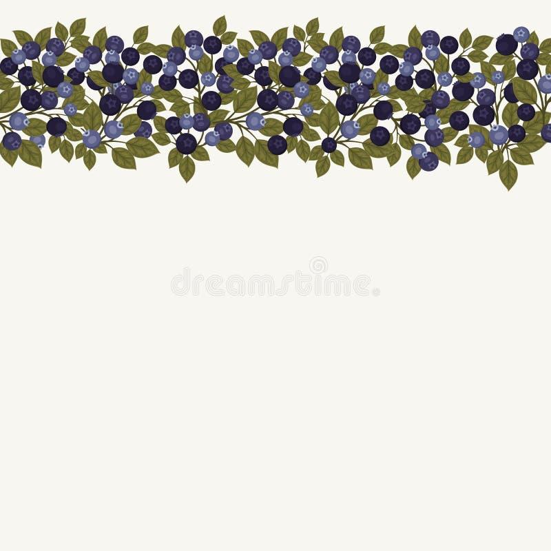 背景蓝莓食物健康有机 库存例证
