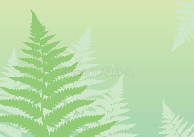 背景蕨绿色 向量例证