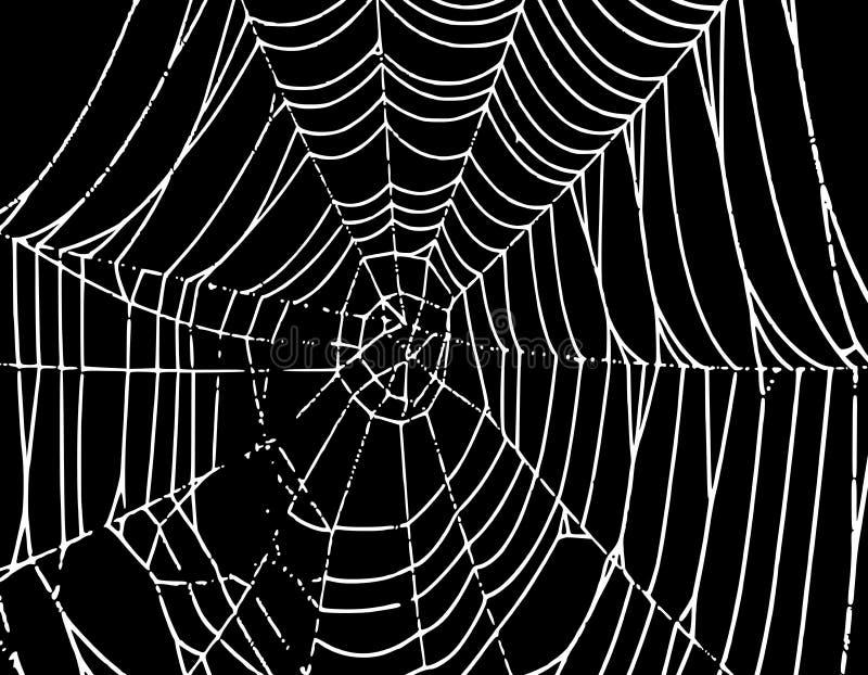背景蜘蛛t向量万维网 皇族释放例证