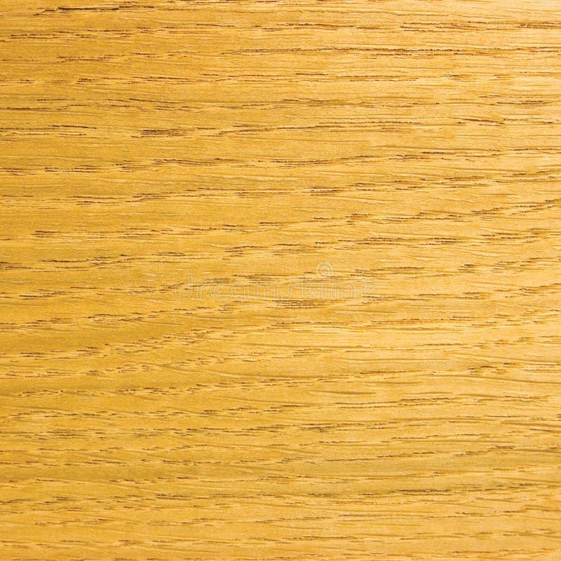 背景谷物光自然橡木纹理表面饰板 图库摄影