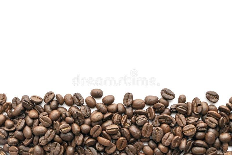 背景豆咖啡例证烤向量白色 特写镜头 库存图片