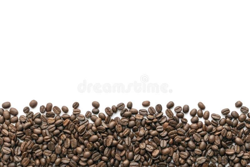 背景豆咖啡例证烤向量白色 特写镜头 免版税库存照片