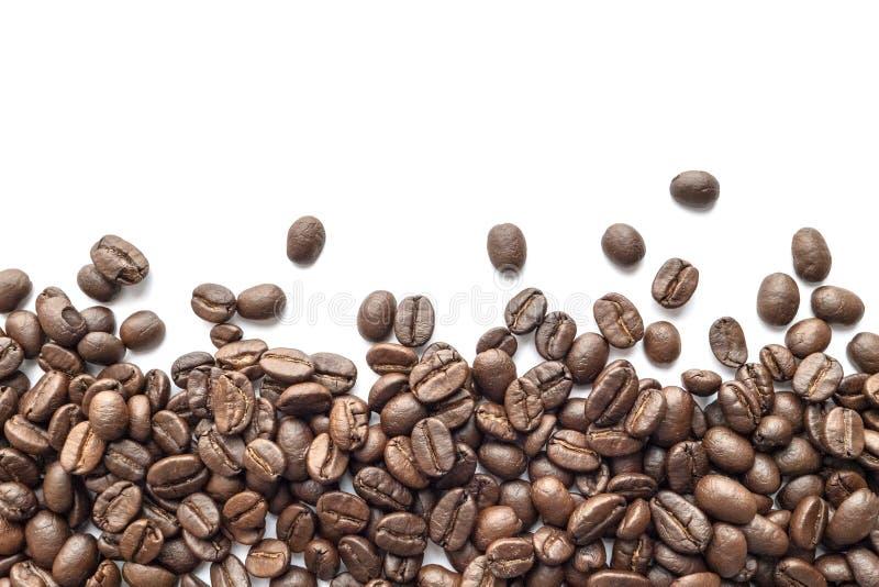 背景豆咖啡例证烤向量白色 特写镜头 免版税库存图片
