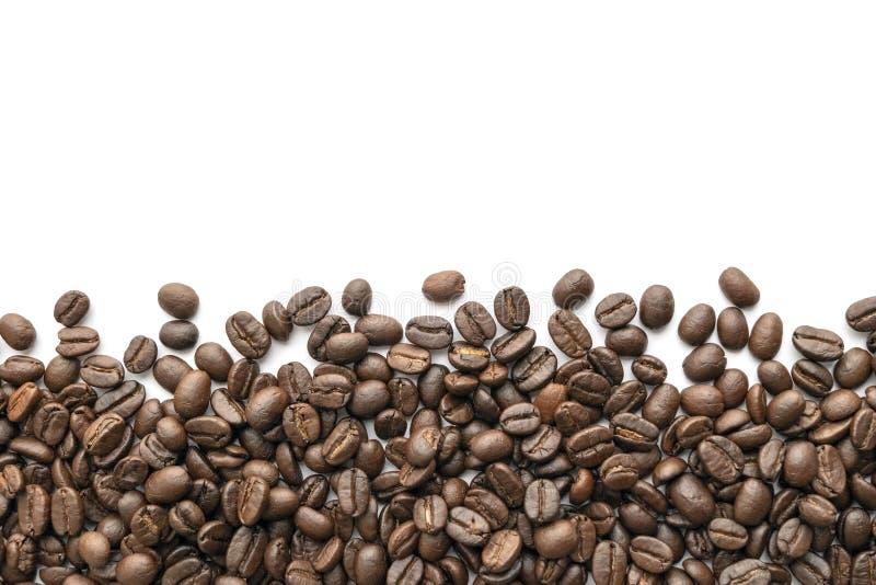 背景豆咖啡例证烤向量白色 特写镜头 库存照片
