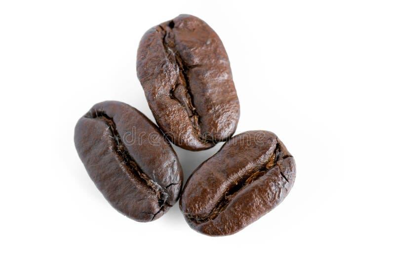 Download 背景豆咖啡查出的射击工作室白色 库存图片. 图片 包括有 背包, browne, 生气勃勃, 上等咖啡, 查出 - 59104915