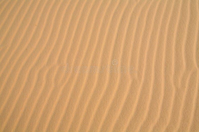 背景起波纹的沙子 库存图片