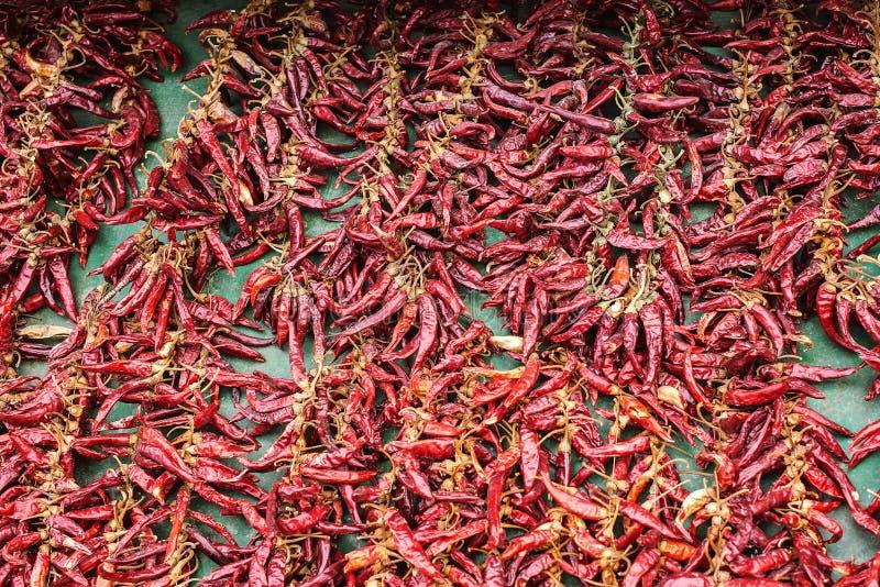 背景辣椒辣椒红色 普遍的种类香料 在老土气木桌上的干胡椒 纹理食物背景 库存照片