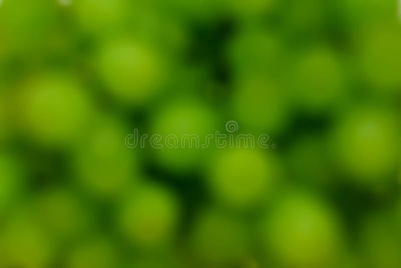 背景迷离葡萄 库存照片