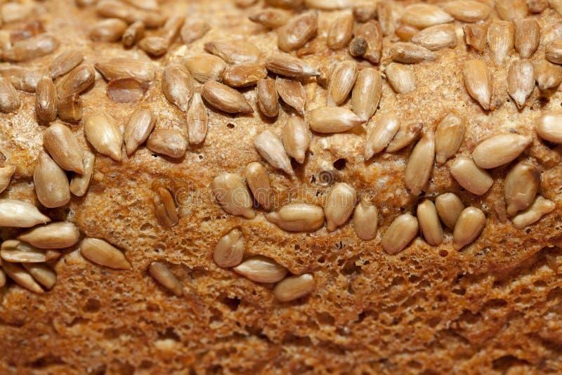 背景面包褐色查出的白色 免版税图库摄影