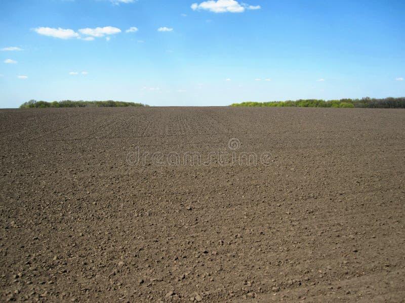 ?? 背景领域、黑土壤、天空和树 库存照片
