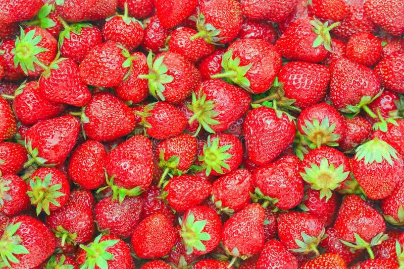 背景食物健康草莓 库存图片