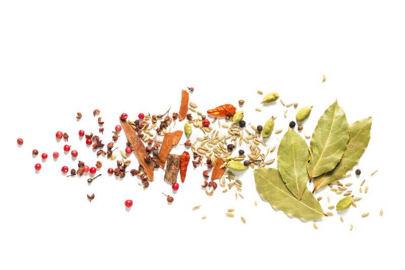 背景食物概念各种各样的香料海湾叶子,辣椒,芫荽子 豆蔻果实荚和茴香籽在白色背景 免版税图库摄影