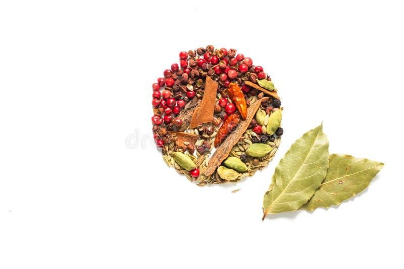 背景食物概念各种各样的香料海湾叶子,辣椒,芫荽子 豆蔻果实荚和茴香籽在白色背景 免版税库存图片