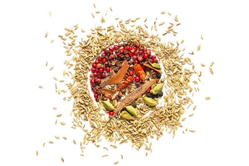 背景食物概念各种各样的香料海湾叶子,辣椒,芫荽子 豆蔻果实荚和茴香籽在白色背景 免版税库存照片